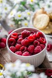 Close-up of Strawberries in Bowl stock photography