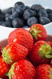 Fruit Close Up - Strawberries and Blueberries Stock Image