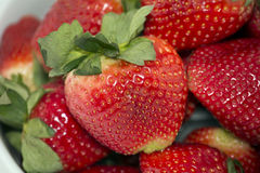 Close Up Strawberries. Close Up Fresh Yummy Strawberries Stock Images
