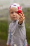 Close-up of strawberries in the hands of a little Stock Photos
