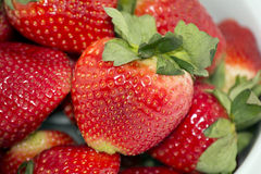 Close Up Strawberries. Close Up Yummy Fresh Strawberries Royalty Free Stock Images
