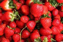 Close up strawberry Stock Photos