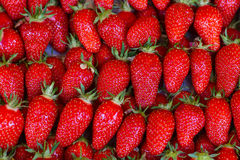 Close up of strawberry on market Stock Photography
