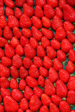 Close up of strawberry on market Royalty Free Stock Images