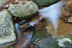 Close-up of a stream at long shutter speed Royalty Free Stock Images