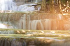 Close up stream waterfall in tropical deep forest Royalty Free Stock Image