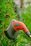 Close up of string lawn trimmer mower cutting grass, over a grass background.  Royalty Free Stock Image