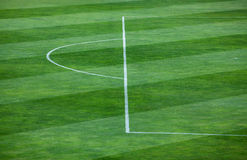 Close-up of striped pattern on grassy soccer field. Vibrant green grass filling a field.  The grass is divided into thick vertical lines with one line containing Royalty Free Stock Photos