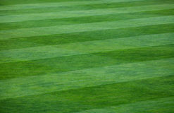 Close-up of striped pattern on grassy soccer field. Vibrant green grass filling a field.  The grass is divided into thick vertical lines with one line containing Royalty Free Stock Photography
