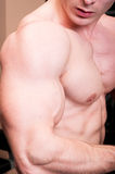 Close up of a strong manly body builder arm Stock Images