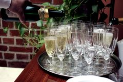 Close-up of a strong waiter`s hand pouring alcohol champagne Royalty Free Stock Images