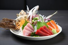 Close up studio shot of fresh sashimi combo. On a dining table royalty free stock photos