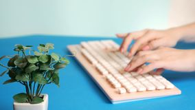 Close-up. stylish greeting video card. female hands are typing on a pink keyboard, next to a flower. on a blue stock footage