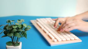 Close-up. stylish greeting video card. female hands are typing on a pink keyboard, next to a flower. on a blue stock photo