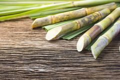 Close up sugarcane on wood background close up. royalty free stock photography
