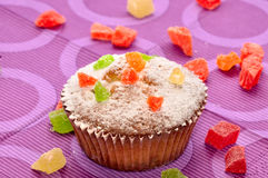 Close up of sugary muffin cupcake. With sugar powder Royalty Free Stock Photos