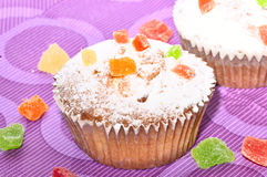 Close up of sugary muffin cupcake. With sugar powder Royalty Free Stock Image