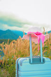 Close up suitcase with pink beach hat Stock Photos