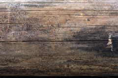 Close up of a sun dried scots pine tree log with all the bark removed and various light and dark patterns on it, espeically a larg. Close up of a sun dried scots Royalty Free Stock Photo