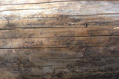 Close up of a sun dried scots pine tree log with all the bark removed with various light and gray areas on the wood. Close up of a sun dried scots pine tree log Royalty Free Stock Images