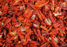 Close Up of sun dried tomatoes. Food background. Italian food Royalty Free Stock Images