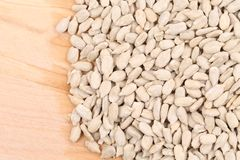 Close up of sunflower seeds. Stock Photography