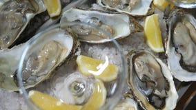 Close-up super de ostras frescas em uma placa branca com gelo e cunhas dos limões, prato do restaurante, guloseima, afrodisíaco video estoque