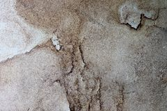 Close up surface of marble walls and grounds in high resolution stock image