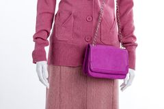 Close up sweater, skirt and clutch. Female mannequin clothed in pink pullover and skirt, white background. Mannequin with stylish pink bag Royalty Free Stock Images