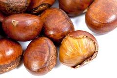 Close up Sweet Chestnut on white background Stock Photo