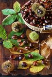 Close up of sweet chestnuts in a wicker basket. Focus selective, top view Stock Photo