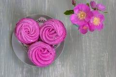 Close up sweet dessert zephyr. stock image