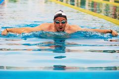 Close-up of swimmer man. In blue outdoor pool water Stock Photos