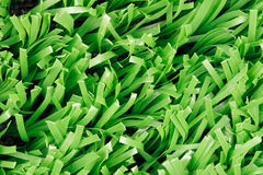 Close up of synthetic grass (Texture) Royalty Free Stock Image