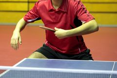 Close up of a table tennis player Stock Photography