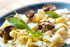 Close up of taggliatelle with funghi porcini. Close up of taggliatelle pasta with funghi porcini sauce Stock Photography