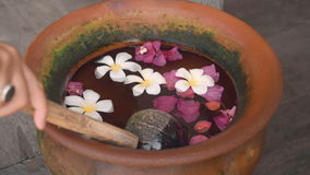 Close up of taking water from vase with frangipani flowers with a wooden scoop. Close up of taking water from vase with frangipani flowers with a wooden coconut stock footage