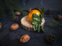 Close-up of a tangerine on a tree saw cut up, fir branches. Close-up of a tangerine on a tree saw cut close-up, fir branches. Close-up. Pine cones and walnuts stock images