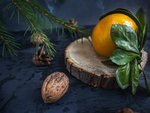 Close-up of a tangerine on a tree saw cut up, fir branches. Close-up of a tangerine on a tree saw cut close-up, fir branches. Close-up. Pine cones and walnuts royalty free stock photos