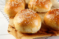 Close up Tasty Burger Buns on Wire Rack royalty free stock photography