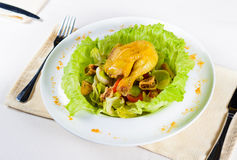 Close up Tasty Chicken Dish with Egg and Veggies Royalty Free Stock Photo