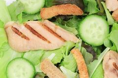 Close up of tasty and fresh ceaser salad Royalty Free Stock Photo