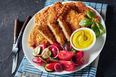 Close-up of tasty Parmesan breaded chicken breast royalty free stock photography