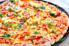 Close up of tasty pizza with chicken, tomato and cheese Royalty Free Stock Image