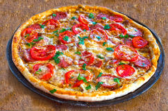 Close up of tasty pizza with chicken, tomato and cheese Stock Photos