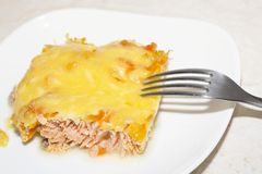 Close up tasty salmon and cheese Stock Photos