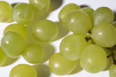 Close up of tasty whine grapes on white background Royalty Free Stock Images