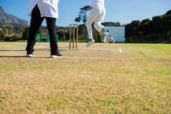 Close up of team playing cricket on pitch royalty free stock images