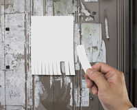 Close up of tear off advertising contact information. With right hand Royalty Free Stock Images