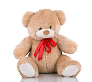 Close up of teddy bear. Stock Images